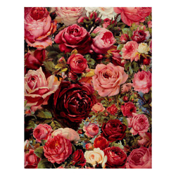 Frameless Red Rose Diy Painting By Numbers Modern Wall Art Paint By Numbers Hand $15.22