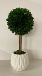 14#x27;#x27; Wooden Boxwood Ball Topiary with Pot $25.59