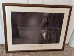 Brother Wolf Framed Art Print by Jim Brandenburg Wolf Wolves Decor $199.00