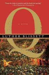 Q by Luther Blissett (English) Paperback Book Free Shipping!