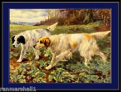 English Picture Print English Setter Dog Dogs Hunting Vintage Art Poster $7.99