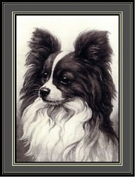 English Picture Print Papillon Puppy Dog Dogs Puppies Vintage Poster Art $7.99