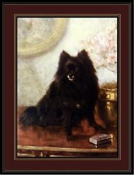 English Print Black Pomeranian Puppy Dog Dogs Puppies Vintage Poster Art Picture $7.99