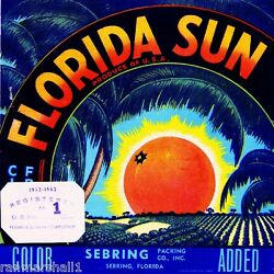 Sebring Florida Sun Orange Citrus Fruit Crate Label Art Print $7.19