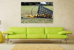 Stunning Poster Wall Art Decor Golf Balls Basket Sport Outdoors 36x24 Inches