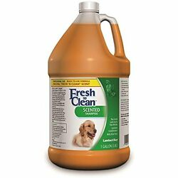 Lambert Shampoos Kay Freshn Clean Scented Dog and Cat Shampoo 1-Gallon