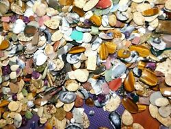 Mix Gemstone Natural Cabochon Oval Pear Fancy Loose Gemstone Wholesale Lot *135