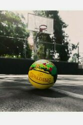 NEW SPALDING STREET TACO SUPREME BASKETBALL LIMITED ED IN HAND NBA $69.99