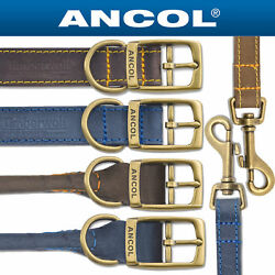 Ancol Timberwolf Leather Dog Collars amp; Leads all sizes Blue or Sable brown $10.14