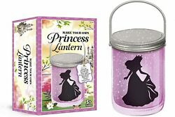 Make Your Own Princess Lantern LED Battery Powered 5 NEW $15.99