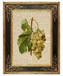 White Grapes Art Print on Vintage Book Page Home Kitchen Wine Room Decor Gifts $12.99