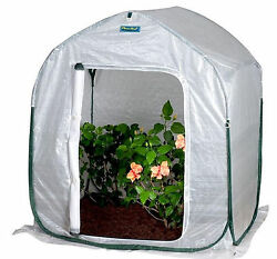 Portable Mini Greenhouse Flowerhouse 4 ft Square Compact Pop-Up Planthouse Cover