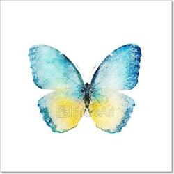 Watercolor Butterfly Isolated On Art Print Home Decor Wall Art Poster C $4.99