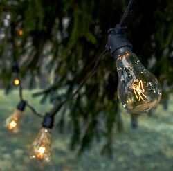 Hometown Evolution Inc. Vintage Outdoor Patio Deck String Lights 50 Foot PS50