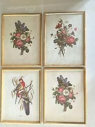 Lot of 4 Vintage Botanical Bird prints bamboo frame she-shed library kitchen
