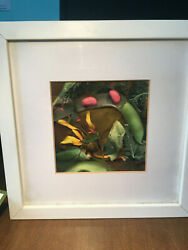 framed art photo signed by the artist