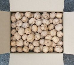 Walnuts in shell English 10+lbs. cleaned dried fresh CA 2019 Harvest