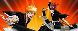 Bleach Anime English Complete Collection