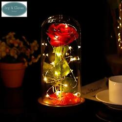 Beauty and the Beast Enchanted Rose in a Glass Dome With Necklace and Love Lette