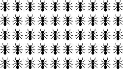 50 Die Cut Ants Decals Window Bumper Sticker Tumbler Kids Decor Bugs Insects $4.00