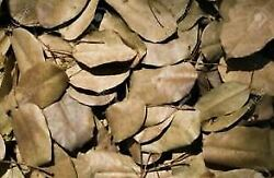 Dried Gliricidia Sepium Leaves 100 Organic Natural Compost manure For Plants $25.99