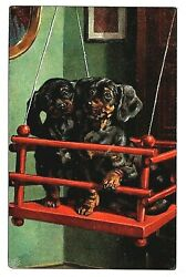 Dachshund Dog Dogs Sitting In Hanging Wooden Carrier Germany antique mailed pc $7.99