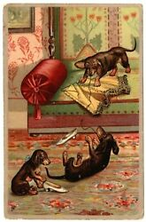 Dachshund Dog Dogs Playing High Heel Shoes Girdle mailed 1907 antique postcard $5.99