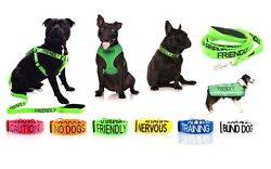 Warning Dog Colour Coded Collar Lead Leash Harness Friendly Blind Sizes