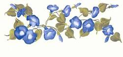 MORNING GLORIES BLUE TRANSFER ART DECALS HAND PAINTED WALL DESIGNS $12.00