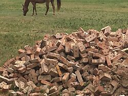Rare Vintage Salvaged Red Clay Texas 3 Hole Bricks 1920's Antique Decor 500 Pcs+