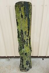 Rustic weathered Real Tree Log with bark for Bench or country projects
