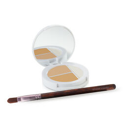 Sheer Cover – Conceal and Brighten Highlight Trio – Natural Finish – FREE Brush $15.00