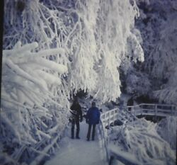 LOT 155 35MM COLOR SLIDES SNOW SCENES SKIING SNOW MEN MOUNTAINS RIVERS #421 $35.00