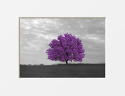 Black White Purple Wall Art Bedroom Living Room Bathroom Purple Gray Pictures $34.99