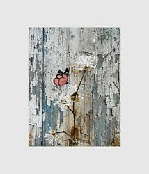 Coral Butterfly Floral Rustic Bedroom Bathroom Home Decor Wall Art Picture $19.99