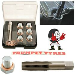 Oil Sump Repair Kit M13 x 1.25 Tap  6 Drain Plugs  12 Copper Washers  5226 $46.58