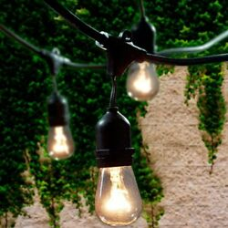 Commercial Grade Outdoor String Lights With 15 Hanging Sockets 48 Ft Black For