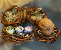Grapevine Nest with Mushroom Birds or Walnut Shell Box Unique Decor Accent Gifts $6.50