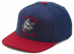 Vans Off The Wall Kids Boys Leaping Lizard Snapback Hat Cap Blue Red $20.00