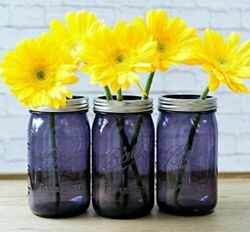 Vintage New Ball Quart Perfect Purple Wide Mouth Canning Mason Jar and Lid32oz $21.99