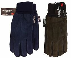 3 M Jaclyn Smith Leather Driving Thinsulate Insulation Comfort Suede Gloves $15.49