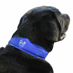 Large Arf Pets Dog Cooling Collar 100% Non Toxic Material Relieves Heat Stress $5.95