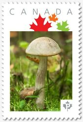 WHITE TOXIC MUSHROOM = quot;Pquot; rate = Picture Postage Canada 2019 p19 11s05 $8.00