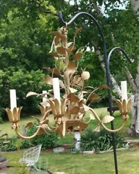 Vintage Five 5 Arm Chandelier Candlelabra Brass Branches Leafs $75.00
