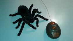 Horrible Pets RC Powered Spider $10.00