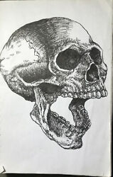 Realistic Skull Ink Drawing $40.00