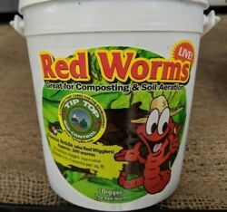 tip top 300 live red worms $30.00