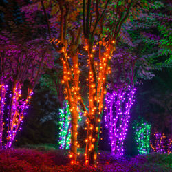 70 Orange Purple Green LED Halloween Lights Black Wire 24ft Party Porch Lawn $19.99