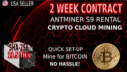 2 WEEK Cloud MINING Contract AntMiner Rental S9 13.5TH SHA-256 BITCOIN Hashing