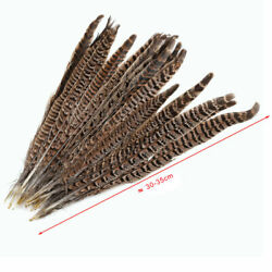 20Pcs 12-14 Inch Natural Pheasant Tail Feathers Long Craft Party DIY Useful #BZ3